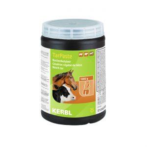 בריאות הטלף בסוסים
